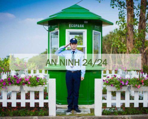 An ninh Ecopark 247